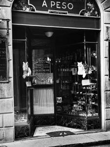 Cats Perching Outside Entrance to Perfume Shop by Alfred Eisenstaedt
