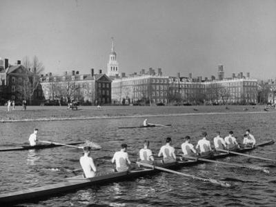 Crew Rowing on Charles River across from Harvard University Campus