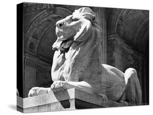 Stone Lion in Front of the New York Public Library by Alfred Eisenstaedt