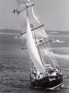 The Black Pearl Sailing Off of Martha's Vineyard by Alfred Eisenstaedt
