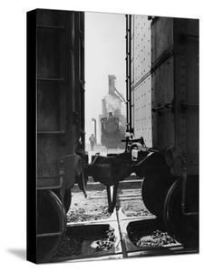 Wartime Railroad: Yemassee Junction Crossover, Atlantic Coast Line, Charleston and Western Carolina by Alfred Eisenstaedt