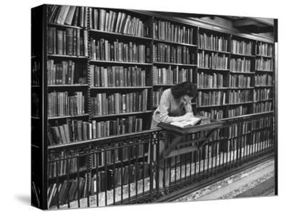 Woman Reading Book Among Shelves on Balcony in American History Room in New York Public Library