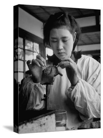 Young Woman Inserting Mother-Of-Pearl Bead into Live Oyster at Pearl Factory