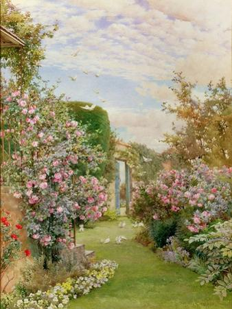 China Roses, Broadway by Alfred Parsons