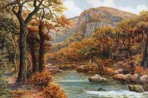 Near Watersmeet, Lynmouth by Alfred Robert Quinton