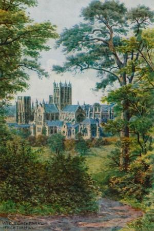Wells Cathedral, from Tor Hill by Alfred Robert Quinton