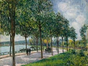 Allée of Chestnut Trees, 1878 by Alfred Sisley