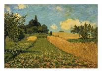 Summer Landscape (Cornfields at Argenteuil), 1873-Alfred Sisley-Giclee Print