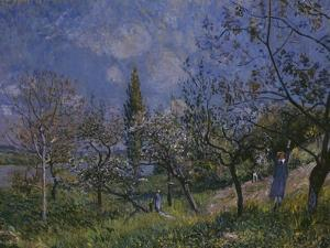 The Orchard, 1881 by Alfred Sisley