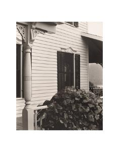 House and Grape Leaves, 1934 by Alfred Stieglitz