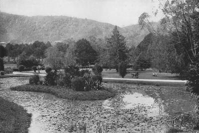 'Hakgalla Gardens from the Lotus Pond, Nuwara Eliya', c1890, (1910)
