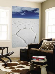 Hexagonal Shapes on Salt Flat by Alfredo Maiquez