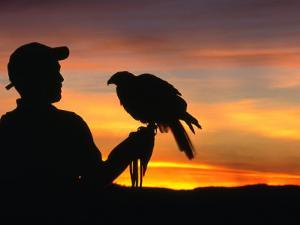 Man Holding a Falcon at Sunset, Perquin, El Salvador by Alfredo Maiquez