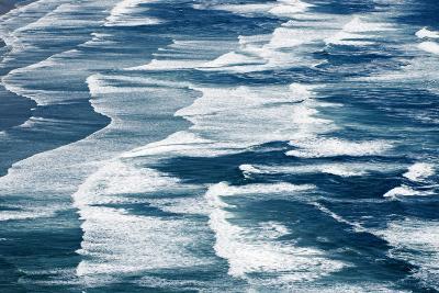 Algae-Covered Pebbles on a Beach-Paul Colangelo-Photographic Print