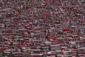 Red Houses by Ali Al-Jazeri