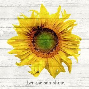 Let The Sun Shine by ALI Chris