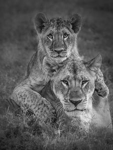 Playtime With Mama! by Ali Khataw