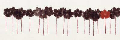 Poppy Drift I