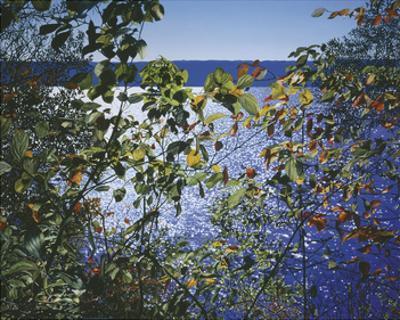 Dark Autumn Leaves by Alice Dalton Brown