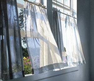 Quiet Room with Flowers (detail) by Alice Dalton Brown