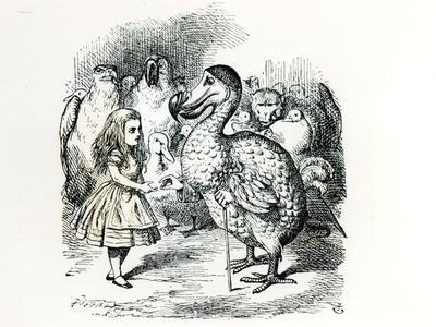 https://imgc.artprintimages.com/img/print/alice-meets-the-dodo-illustration-from-alice-s-adventures-in-wonderland-by-lewis-carroll-1865_u-l-p55f730.jpg?p=0