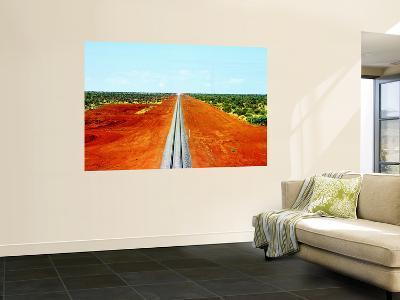 Alice Springs to Darwin Railway Line-John Banagan-Wall Mural