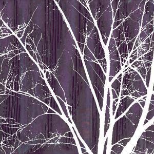 Aurora Silhouette III by Alicia Ludwig