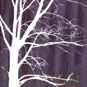Aurora Silhouette IV by Alicia Ludwig