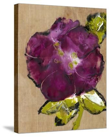 Camellia Passion II