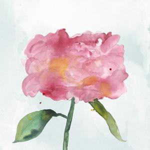 Joyful Peony IV by Alicia Ludwig