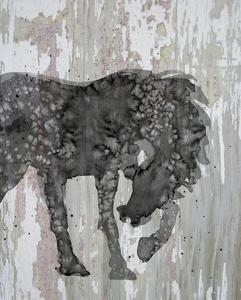 Unbridled I by Alicia Ludwig