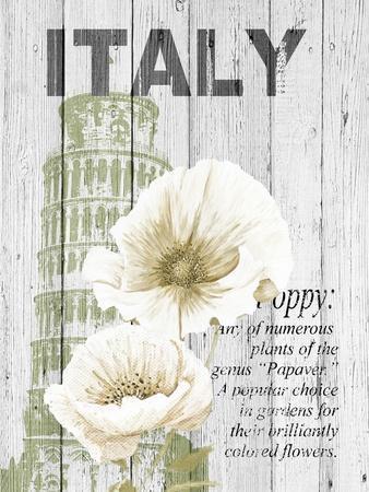 Italy Poppies