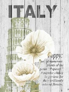 Italy Poppies by Alicia Soave