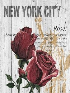 New York Roses by Alicia Soave