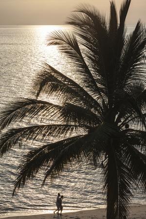 Palm Tree and Men at Sunset, Stone Town, Zanzibar, Tanzania