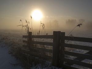 Winter Mood by Alida Van Zaane