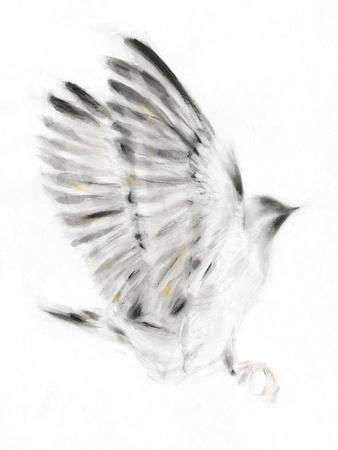 https://imgc.artprintimages.com/img/print/alight_u-l-f7n5d10.jpg?p=0