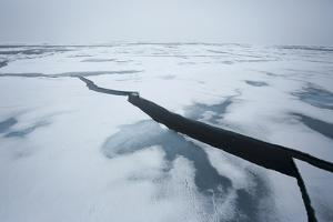 Arctic, Northeast Svalbard, Bering Strait. Breaking Polar Pack Ice by Aliscia Young