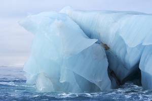 Arctic, Svalbard, Brasvellbreen. Huge Iceberg Floats Near the Brasvell Glacier by Aliscia Young