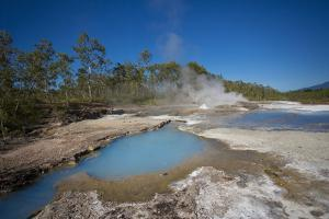 Papua New Guinea, Dei Dei Hot Springs, Steam Rising from a Hot Spring by Aliscia Young