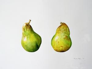 A Pair of Pears, 1997 by Alison Cooper