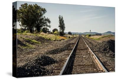 California, Sacramento River-San Joaquin Delta Area, Mcavoy Harbor