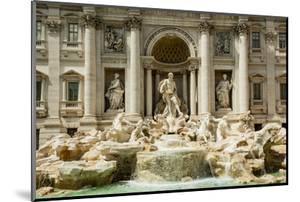 Italy, Rome. The Trevi Fountain, designed by Nicola Salvi. Aqua Virgo, 'Ocean' by Alison Jones