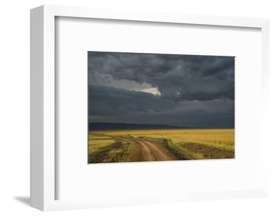 Kenya, Maasai Mara, Mara River Basin, Storm Cloud at Sunset and Road