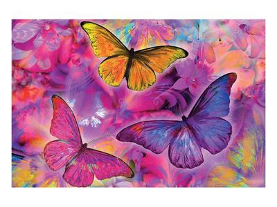 Rainbow Orchid Morpheus