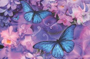 Violet Orchid Morpheus by Alixandra Mullins