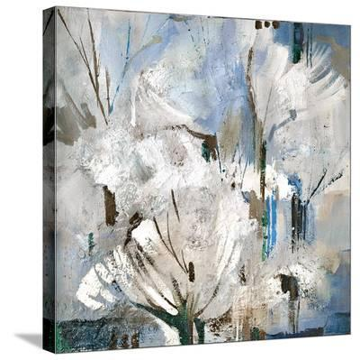 All Seasons Series 1-Alan Monte-Stretched Canvas Print