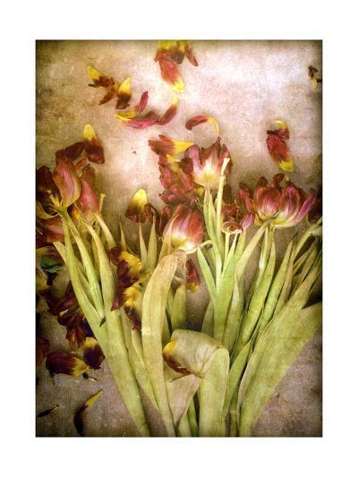 All time Beauty-Alaya Gadeh-Art Print