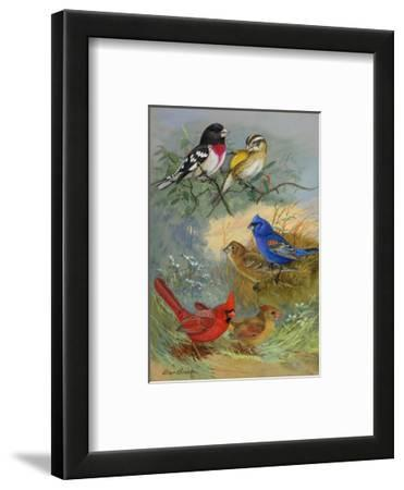 A Painting of Grosbeaks and Cardinals
