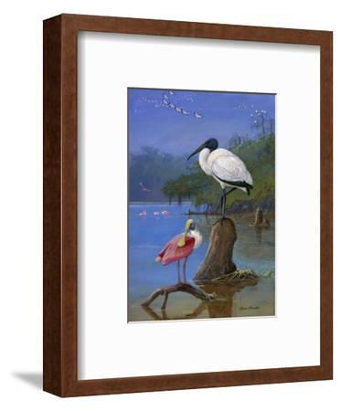 A Wood Ibis Perches with a Roseate Spoonbill on Dead Tree Limbs